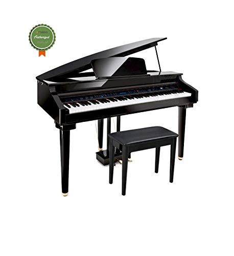 Artesia AG-28 Best Micro Grand Digital Piano